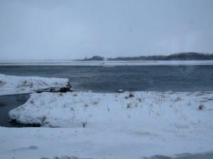 濤沸湖水鳥・湿地センターからの眺め