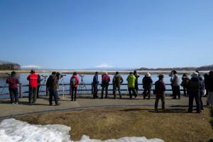 2016年3月27日:濤沸湖探鳥会