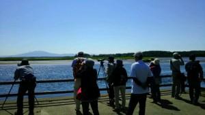 2016年7月24日 濤沸湖定例探鳥会