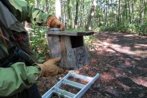 ヒタキ類用の巣箱