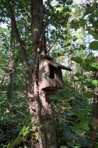ヒタキ類用巣箱その2
