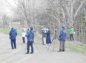 2017年5月5日北見市緑ヶ丘森林公園早朝探鳥会の様子