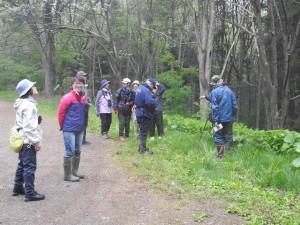 2017年5月26日緑ヶ丘森林公園(北見市)早朝探鳥会の様子