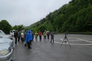 2017年6月4日鹿ノ子ダム(置戸町)探鳥会