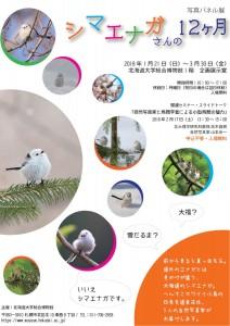 「シマエナガさんの12月」写真パネル展