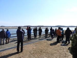 2018年3月25日 濤沸湖探鳥会